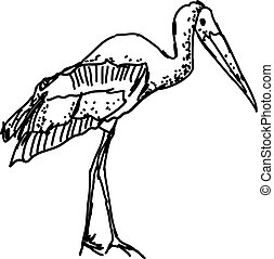 Stork drawing, illustration, vector on white background.