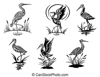 Stork, heron, crane and egret birds vector illustrations in...