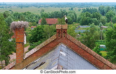 stork in the nest on an old house, stork nest on the roof of a red brick building, stork with small chicks in the nest