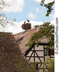 Stork nest on Alsace farmhouse - Half timber framed...