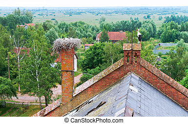 stork nest on the roof of a red brick building, stork in the nest on an old house, stork with small chicks in the nest