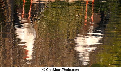 Stork Reflection on Water