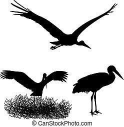 stork, silhouettes
