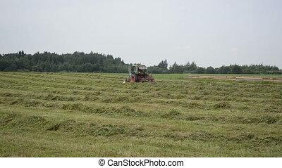 stork tractor rake hay - Stork bird and tractor turning...