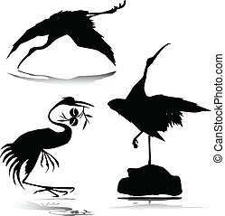 stork vector silhouettes