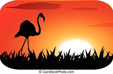 stork with sunset
