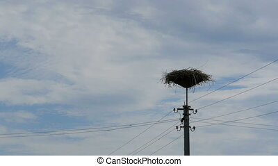 Storks Family in its Nest on a Pillar. Time Lapse - Storks...