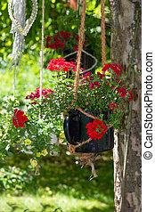 Storksbills or geranie in a hanging basket.