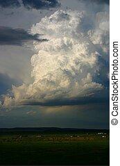 Storm 8717