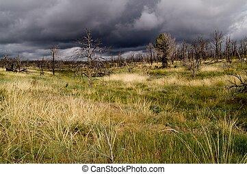 Storm clouds over Mesa Verde