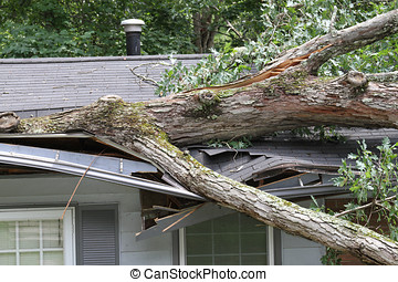 Storm Damage - House roof crushed by a white oak tree suring...