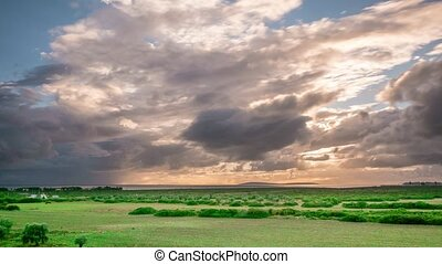 Storm dark clouds over field with green grass and trees. 4k. Time lapse.