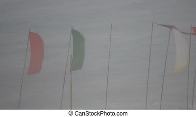Storm, Floods During Tropical Storms. waving flags from the...