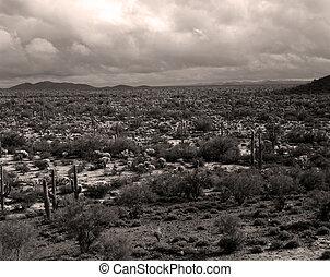Storm forming Sonora Desert