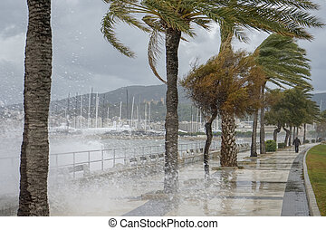 storm in the bay