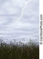 Storm Sky Lightning - Storm Sky With Lighting Over Tall...