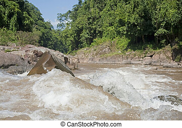 Storm stream water in tropical forest