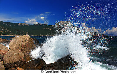 Storm waves on the tropical sea
