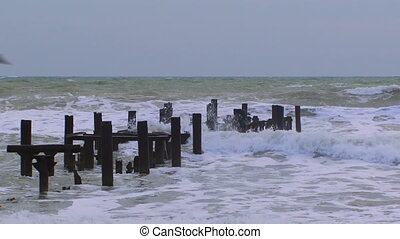 Storm waves - Storm attacks shore birds flee.