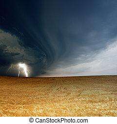 stormig himmel, mogen, korn
