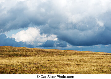 Stormy clouds - Dark stormy clouds over field