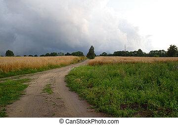 Stormy Clouds Over Field - stormy clouds over field, summer...