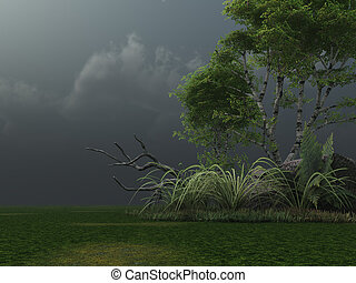 stormy clouds - birch and stormy clouds - 3d illustration