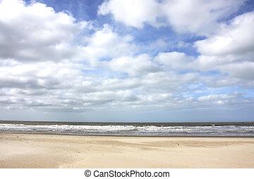Stormy Coast