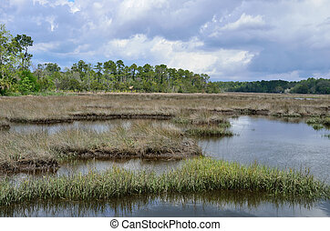 Stormy day at Borrell Creek - Stormy skies over the marsh at...