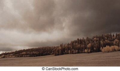Stormy Meadow - Stormy meadow panorama