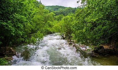 Stormy mountain river in the forest