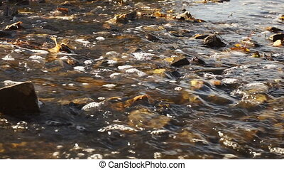 Stormy river with rocky bottom closeup