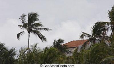 stormy scene, south beach in miami, florida