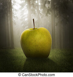 stort äpple, in, den, skog