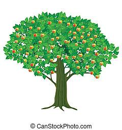 stort, äpple träd