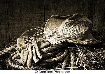 strå hat, hos, handsker, på, en, hø balle