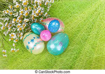 stråle, sol, ägg, frisk, vit, påsk, tusenskönor