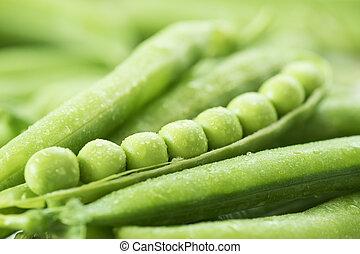 strąk, peas., zielone tło, roślina, groch