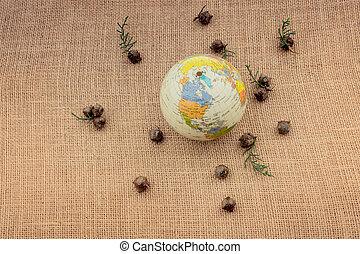 strąki, roślina, torebki, kula, środek