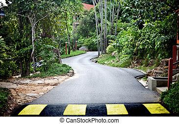 straße, in, grün, malaysien, regen, forest.