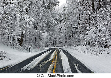 straße, in, winter, schneien szene