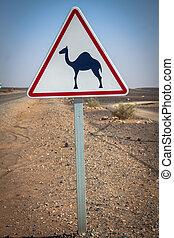 straße zeichen, in, marokko