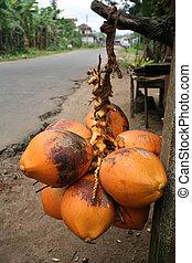 straßenrand, kokosnuss, stall