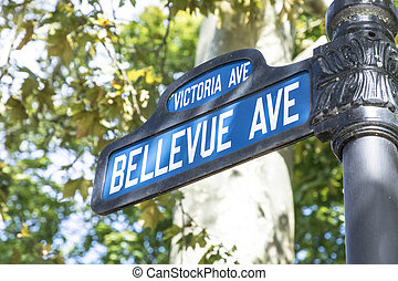 straßenschild, bellevue, ave, der, berühmt, allee, mit, der,...