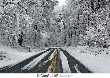 straat, in, winter, sneeuwen scêne
