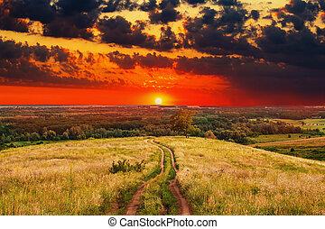 straat, landscape, ondergaande zon , zomer, natuur, akker, hemel, landelijk, groene, zonopkomst, boompje, gras, steegjes