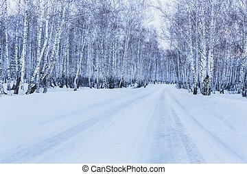 straat, om te, winter, berk, bos