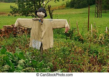 strach na wróble, ogród