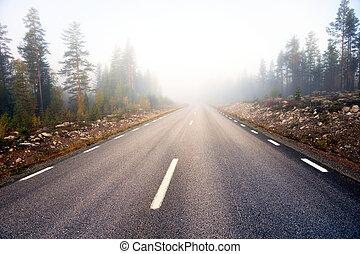 strada asfaltata, su, nebbioso, mattina