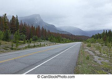 strada, attraverso, montagne rocciose, in, banff parco nazionale